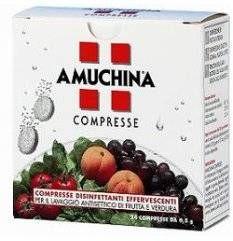 Amuchina 24cpr 0,5g