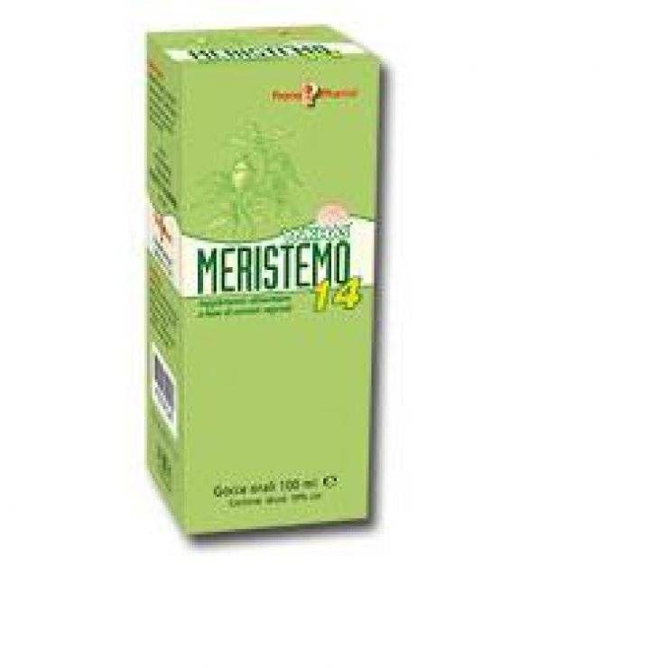 MERISTEMO YNKHAS 14 100ML