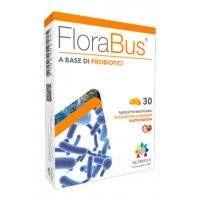 Florabus 30tav