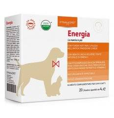 ENERGIA 20BUST 4G