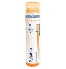 PULSATILLA 15CH GR 1G